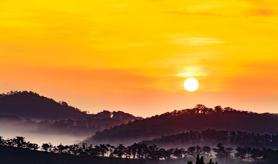 Sunrise on mountain by Dung Pham - Landscapes Mountains & Hills ( dawn, mountain, tree, sunshine, morning dew, sunrise, morning, sun )