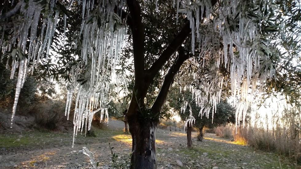 Carámbanos de hielo en Oria. Fotografía de José Antonio Martínez.