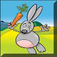 Fun Bunny Game