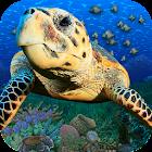 Popar Sea Life icon