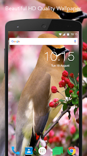 Beautiful Bird Wallpaper - náhled