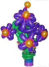 Photo: Balloon flowers