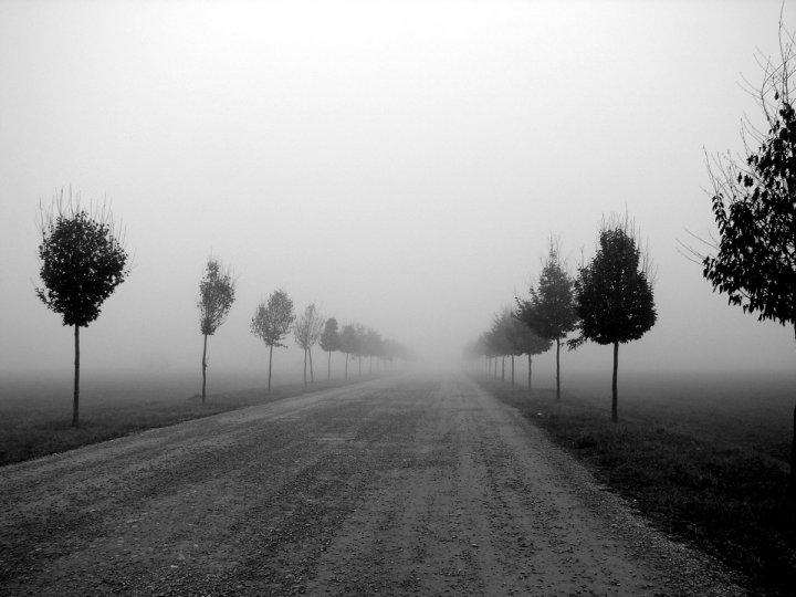 nebbioso silenzio di walterio