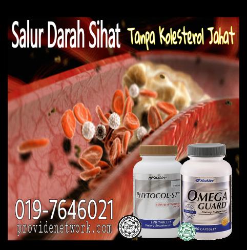 sihat tanpa kolesterol
