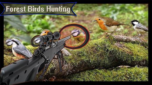 Télécharger Forêt 3D - Chasse aux oiseaux - Tireur d'élite APK MOD (Astuce) screenshots 1