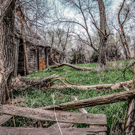 by Shelly Nichols Hellbusch - Buildings & Architecture Decaying & Abandoned
