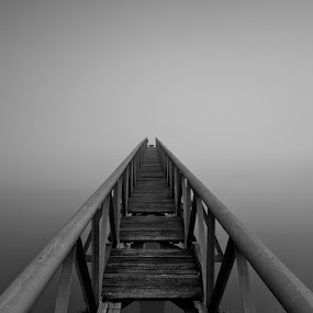 The unknown by Hugo Marques - Buildings & Architecture Bridges & Suspended Structures ( fog, tagus, bw, river, mist )