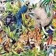 Mengenal Dunia Binatang