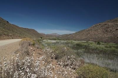 Grüne Ebene um den Sand River, im Hintergrund der Grootrivierhoogte Pass