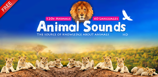 Animal Free Mp3 Download: Download Animal Sounds For PC