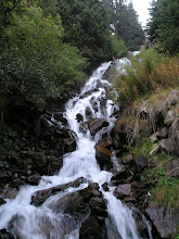 Photo: Cascade in the forest