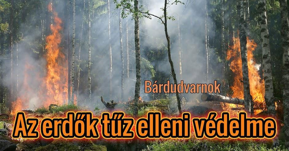 Az erdők tűz elleni védelme