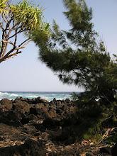 Photo: C1250076 Maui - wulkaniczne wybrzeze