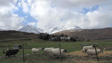 Photo: Isle of Skye - Trotternish - Luib (il a neigé)