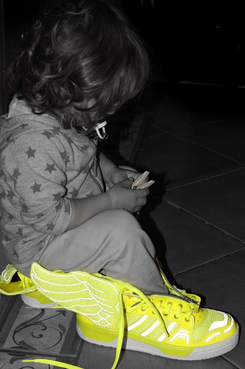 sognare ali gialle di Anna Martini