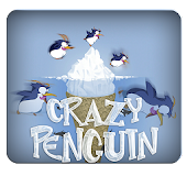 crazy penguin in iceland