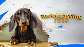 Pup Paranoia thumbnail