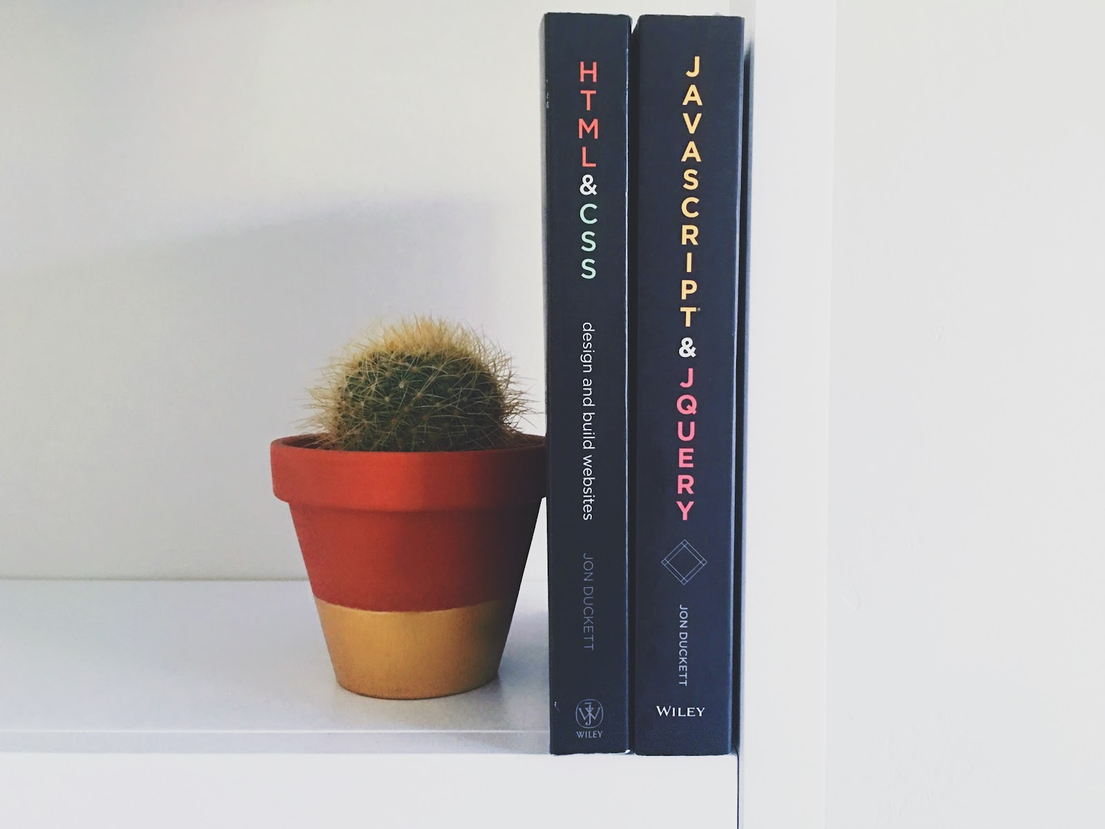 Two coding books being held up by a flower pot