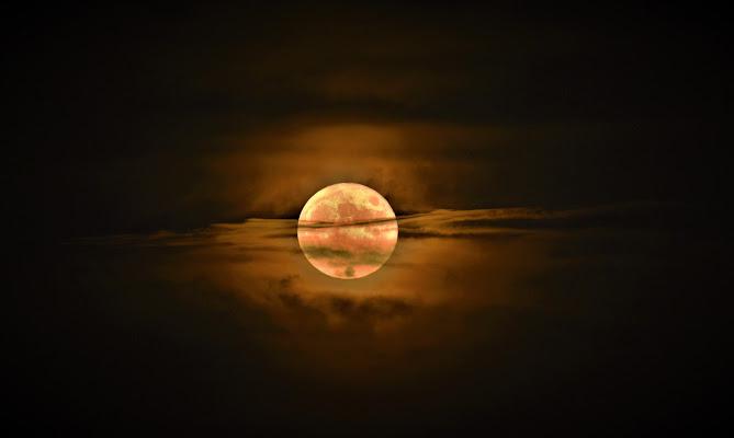 The Buck Moon di ombra