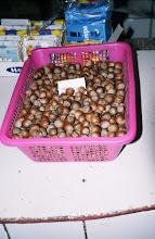 Photo: 03114 ウランバートル/風景/ダライ・エージ(海の母)/食料品専門の市場/栗