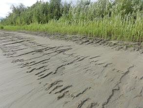 Photo: Ляпин. Вот так упала вода, берега глинистые, мокрые.