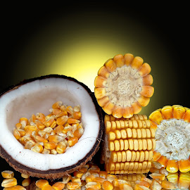 Corn  by Asif Bora - Food & Drink Fruits & Vegetables (  )