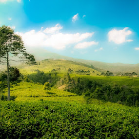 Blue sky by Daniel Rico Sukoyo - Landscapes Mountains & Hills (  )