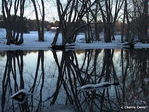 Photo: Winter dusk