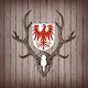 Download Jagdschein Trainer Brandenburg For PC Windows and Mac 1.0