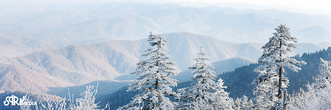 Photo: Great Smoky Mountiains - Clingman's Dome Trail