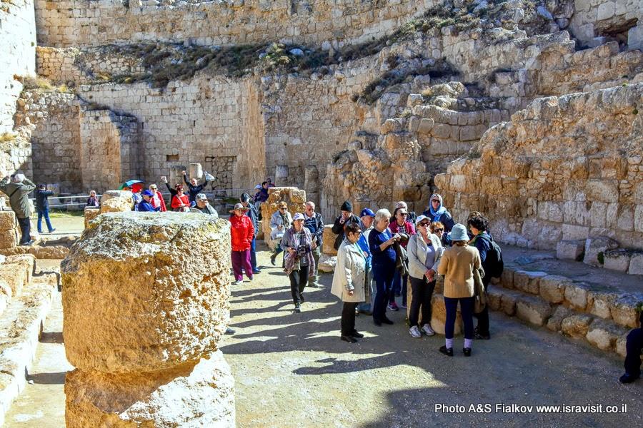 Экскурсия в национальном парке Израиля Иродион. Гид в Израиле Светлана Фиалкова.