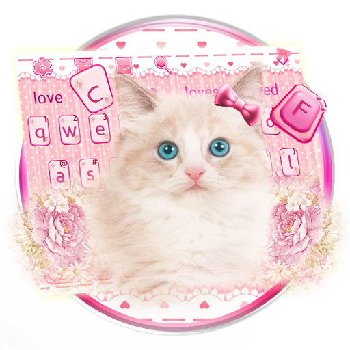 Flower Pink Cute Cat file APK Free for PC, smart TV Download