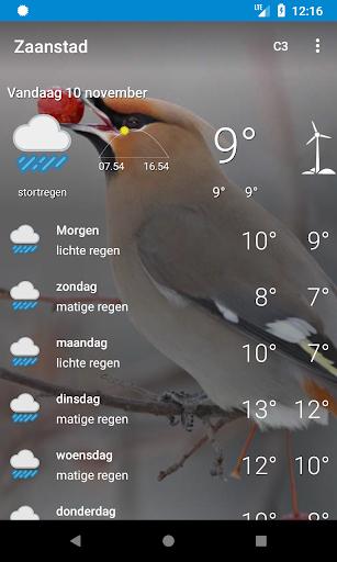 Zaanstad - weer, dieren for PC