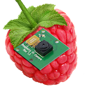 RaspberryPi Camera Viewer icon