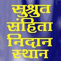 Sushrut Samhita icon