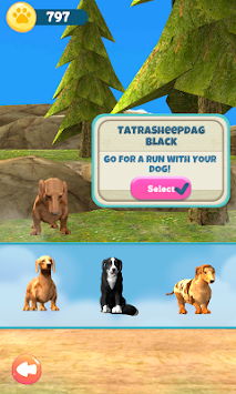 Dog Run apk screenshot