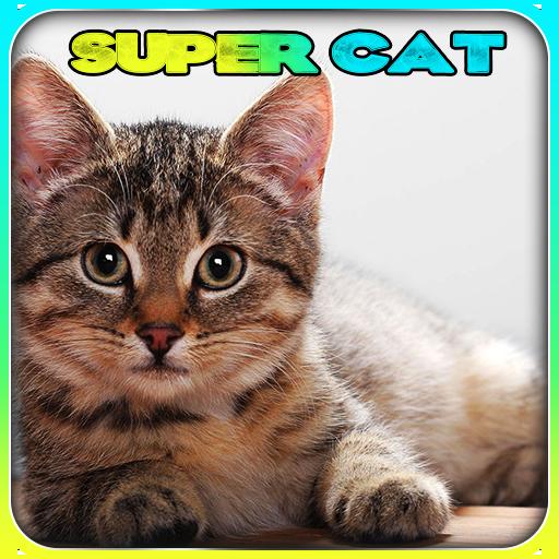 Super Cat 3D
