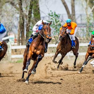 Legion Horse Races 2015-274-Edit-Edit.jpg