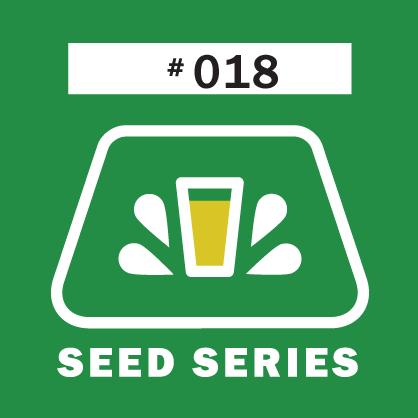 Logo of Fernson Seed Series #018