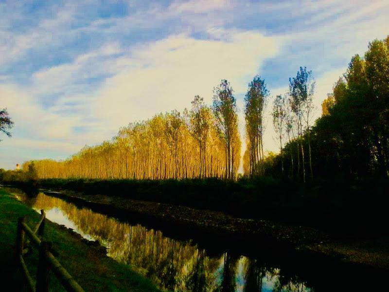 Il Naviglio in autunno  di annabus58