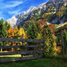 Jesenske barve by Bojan Kolman - Landscapes Mountains & Hills