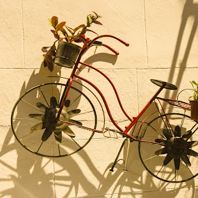 the bike  by Anto Boyadjian - Artistic Objects Toys ( bicycles, bike, toy, toys, bicycle )