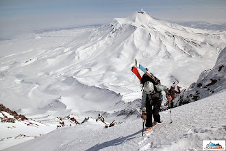 Photo: Katka followed by Clarion - volcano Avachinsky in the background