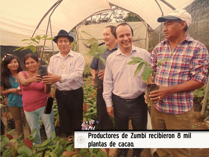 PRODUCTORES DE ZUMBI RECIBIERON 8 MIL PLANTAS DE CACAO.