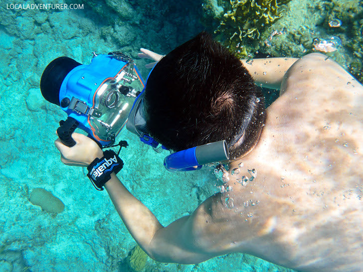 Underwater Housing (25 Best Gifts for Photographers).