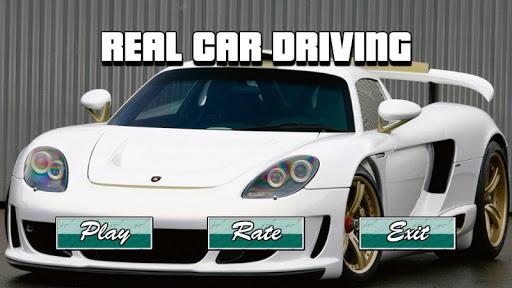 真正的汽車駕駛