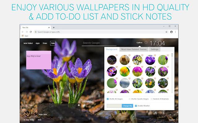 Crocus Flower Wallpaper HD Crocus Flowers New Tab