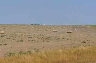 Photo: Arid farmland we passed on the way to Badlands National Park.