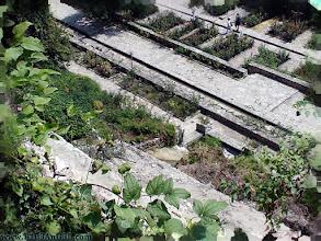 Photo: balchik, botanic, bulgaria, garden, palace, travel