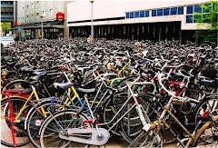 Visiter Tour de la ville en vélo
